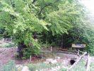 fovefat_2009_rudo_p5150026.jpg: 236k (2009-05-15 11:28)