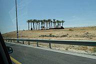 israel_2014_day3_p103012702.jpg: 110k (2014-05-04 10:34)