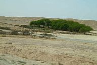 israel_2014_day3_p103013608.jpg: 122k (2014-05-04 12:09)