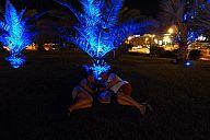 israel_2014_day3_p1030255113.jpg: 141k (2014-05-04 21:20)