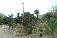 israel_2014_day4b_p103037982.jpg: 169k (2014-05-06 13:24)