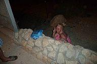 israel_2014_day4b_p1030402104.jpg: 96k (2014-05-06 21:29)
