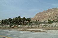 israel_2014_day5a_p103041002.jpg: 101k (2014-05-07 08:15)