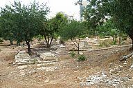 israel_2014_day5a_p103043017.jpg: 251k (2014-05-07 13:26)
