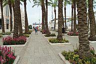 israel_2014_day5a_p103043219.jpg: 215k (2014-05-07 13:55)