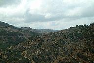 israel_2014_day5b_p103055944.jpg: 108k (2014-05-08 13:58)