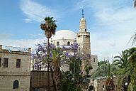 israel_2014_day5b_p103056348.jpg: 167k (2014-05-08 14:46)