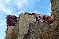 israel_2014_day5b_p103056550.jpg: 152k (2014-05-08 14:47)