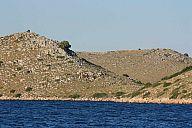 jachta_2010_vj_nature_img_4049.jpg: 170k (2010-06-24 19:27)