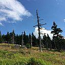 2015-07-25_krkonose_endzi_d1_14.15.02.jpg: 152k (2015-07-25 12:15)