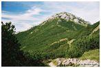 rohace2004_day1-042.jpg: 65k (2004-09-11 21:55)