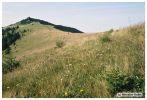 rohace2004_day2-012.jpg: 69k (2004-09-11 21:56)