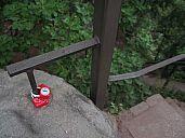2015-06-27_sas_svycarsko_kika_img_1849.jpg: 109k (2015-06-29 19:58)