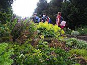 2015-06-27_sas_svycarsko_kika_img_1869.jpg: 288k (2015-06-29 20:05)