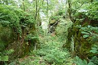 2015-06-27_sas_svycarsko_slavo_p1040473.jpg: 308k (2015-06-27 11:21)