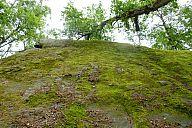 2015-06-27_sas_svycarsko_slavo_p1040477.jpg: 310k (2015-06-27 11:28)