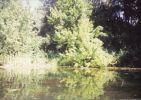 foto45.jpg: 94k (2000-10-23 17:18)