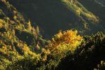 rohace_2011_miro_img_8671.jpg: 130k (2011-10-01 16:14)