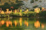 rohace_2011_miro_img_8746.jpg: 190k (2011-10-02 13:20)
